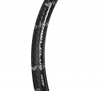 PADANGA SCHWALBE MARATHON PLUS EVOLUTION, DYDIS 25X540 MM